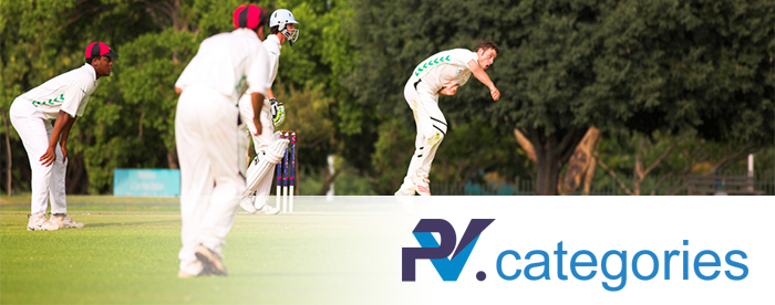 Cricket Coaching Categories